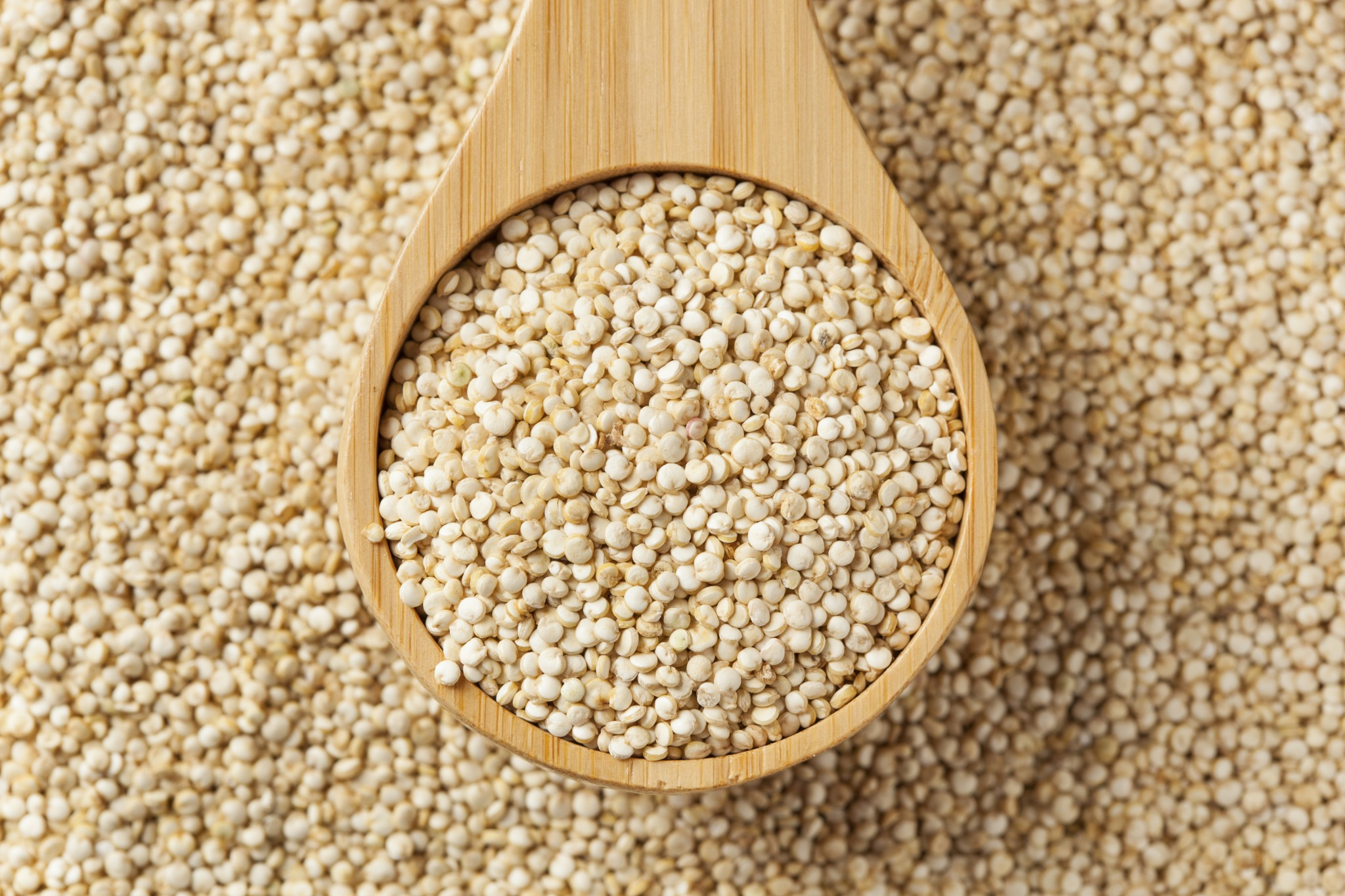 Raw Organic Quinoa Seeds